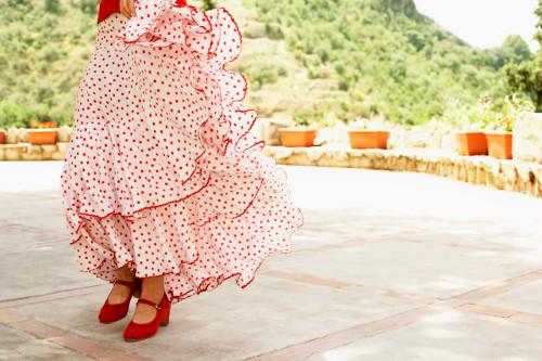 Flamenco_s